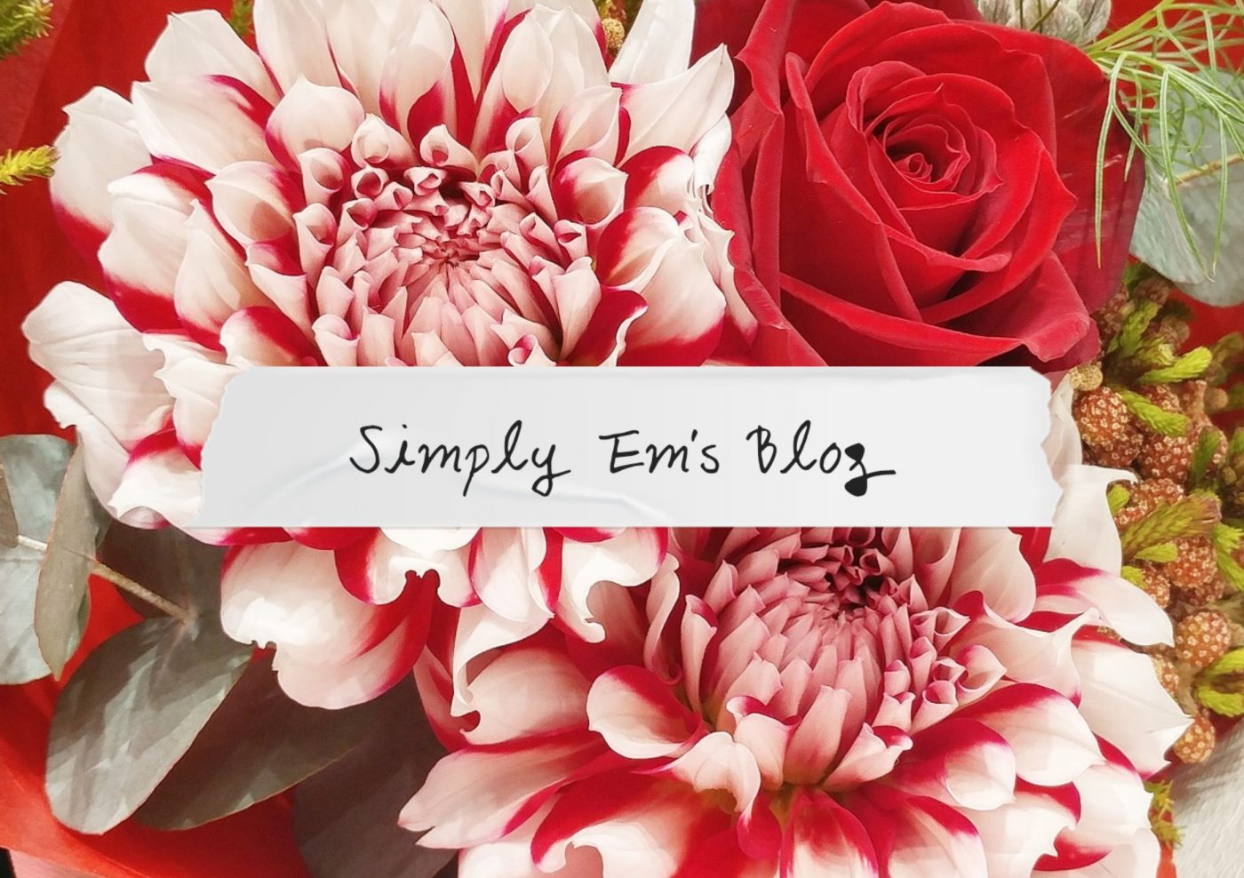 SimplyEm'sBlog